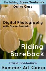 Barebackblogbug